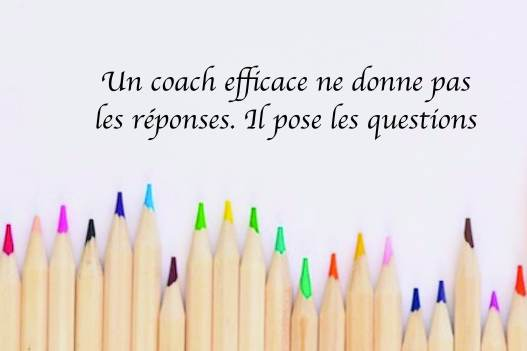 Pose les questions